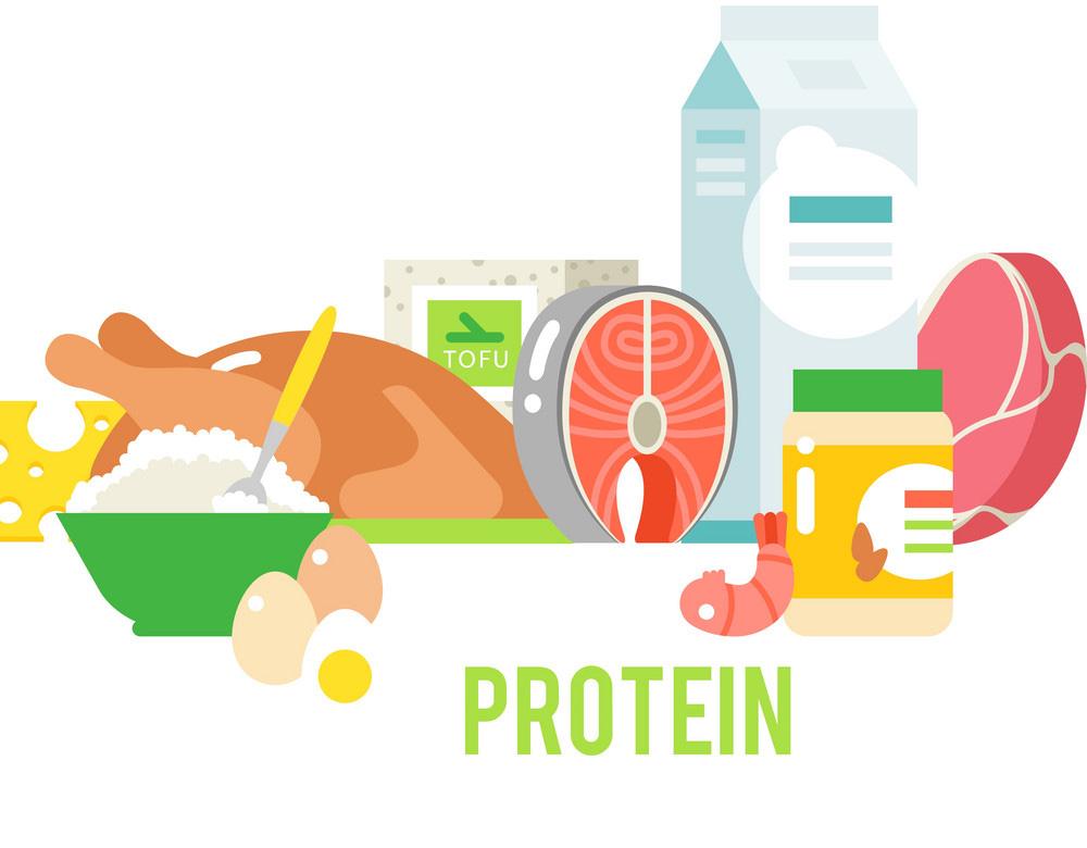 پروتئین بدنسازی پگاه